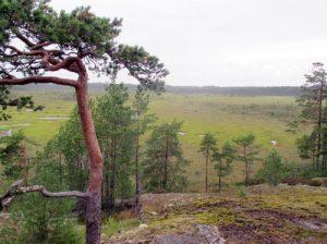 Marttilankorven maisemia. Kuva Kaija Virtanen.