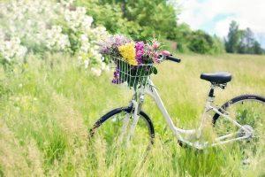 alt_kuvituskuva_polkupyörä